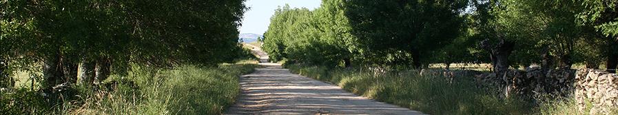 La Ruta de la Plata :: Casa rural Jorge